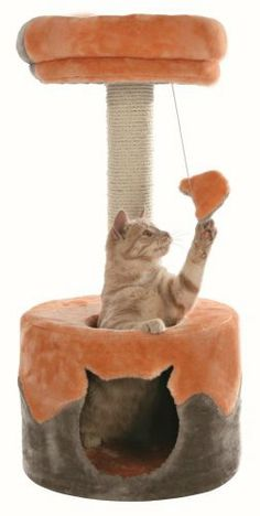 Cat Scratching Post and Bed 'Nuria' Trixie