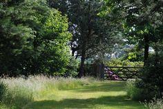 Home Sweet Home » Een landschapstuin maakt de natuur voelbaar