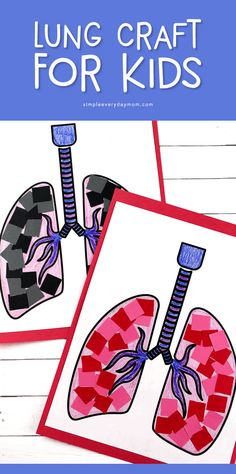 Teach young kids about the respiratory system with this simple lung craft for preschoolers. It's a great activity for human body unit studies. Body Preschool, Preschool Art Activities, Preschool Lessons, Toddler Preschool, Preschool Kindergarten, Science Lessons, Human Body Science, Human Body Activities, Human Body Art