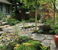 rock walk-way, no-grass yard, dry river bed through front of house?