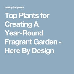 Top Plants for Creating A Year-Round Fragrant Garden - Here By Design