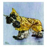 """Butch in Raingear "" April 2 1949"