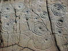prehistoric stone carvings - Google Search