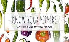 Cayenne, Habanero, Poblano, Serrano: Know Your Chile Peppers - Chowhound