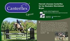 We do a bit of straight Dressage and Show-jumping but we specialise the most in Eventing. I use Canterflex because I know how important it is to keep our horses joints happy. I believe all horses should be on a joint supplement and Canterflex uses natural ingredients which I love. Bryan has been on Canterflex since Ipurchased him and he has become an even more beautiful, happy and healthier horse, thanks to Canterflex. Hannah Walls