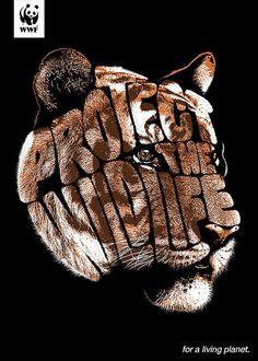 Comunicazione visiva | WWF