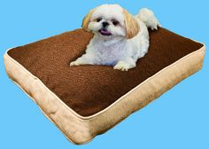 Friday Freebie: Win Your Dog a Bed Covered in Hardy Crypton Fabric