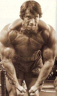 GOD is Arnie! : Zdjęcie