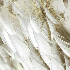 Angel Aesthetic, Gold Aesthetic, Queen Aesthetic, Memory Crafts, In Memory Of Dad, And So It Begins, White Feathers, All Poster, Posters