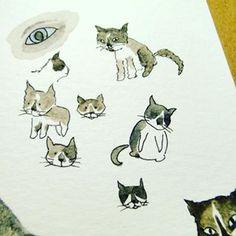 rabiscos de gatos! cat doodles!