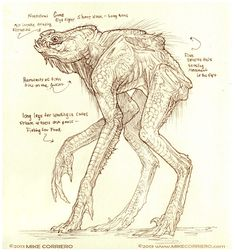 Creature Spot - The Spot for Creature Art, Artists and Fans - Anatomy, Creatures, Concept Sketches, Illustrations
