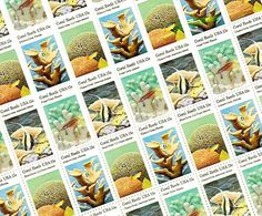 Florida Stamp Set - Vintage Unused Postage for your wedding, event or every day mailings! Postage Rates, Love Stamps, Vintage Stamps, Unique Vintage, Wedding Invitations, Birthdays, Cool Stuff, Florida, Handmade