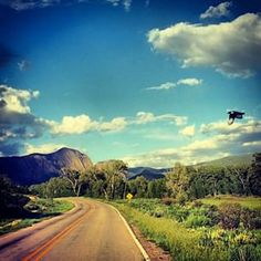Brazos Falls Sidetrack App|Blue jay in flight {Brazos Canyon NM USA}