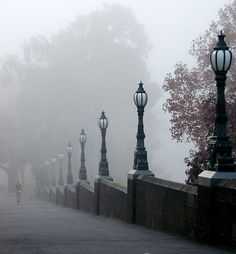 A Melbourne fog - don't worry it will be sunny later, then rainy, then sunny again!