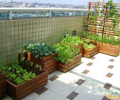 Ogródek warzywny na tarasie