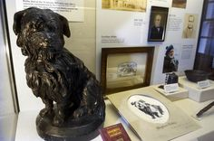 Did you know you can see Greyfriars Bobby's collar and bowl at the Museum of Edinburgh?