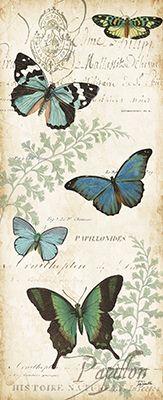 Butterfly.Histoire.Naturelle.01.of.02