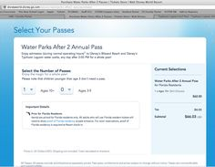 Disney Waterparks Annual Pass. Kids under 3 are free!