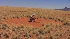 Resultado de imagen de desierto de namibia