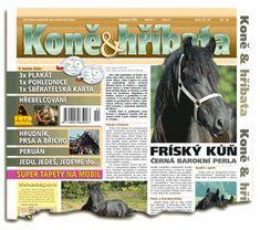 Listopad 2006 Equestrian, Magazines, Horses, Animals, Journals, Animales, Animaux, Horseback Riding, Horse