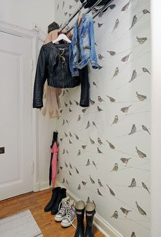 Love the birdie wallpaper!