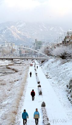 South Korea winters our cold!