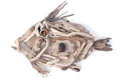 -Driftwood Fish John Dory Driftwood Print
