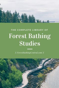 Forest bathing studies: complete library of forest bathing shinrin-yoku studies and articles Benefits Of Forest, Shinrin Yoku, Forest Bathing, Spiritual Health, Mental Health, Nature Sounds, Urban Setting, Forest School, Green Landscape