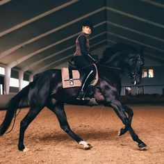 Great moving shot! horse riding clothes