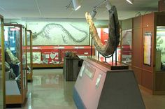 Johnston Geology Museum at Emporia State University