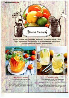 Domácí limonády