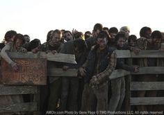 The Walking Dead Season 2 Episode Photos 134 - The Walking Dead Season 2 Episode…