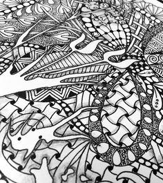 zentangle butterflies - Google Search