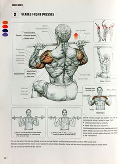 Seated Barbell Front Presses