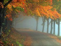 Un po' di sole, una raggera d'angelo,  e poi la nebbia; e gli alberi,  e noi fatti d'aria al mattino.  Salvatore Quasimodo