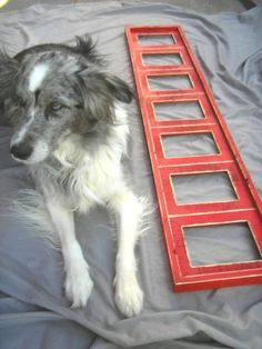 Large picture frame Multiple opening frame 7 by 2DogsWoodWorking, $123.50