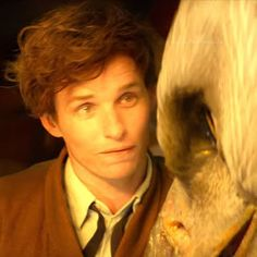 Newt Scamander, protagonist of the Harry Potter spinoff, is an unconventional male hero. He performs a refreshingly atypical form of . Newt Scamander Aesthetic, Harry Potter Icons, Eddie Redmayne, Fantastic Beasts And Where, Hogwarts, Crushes, Hero, Cute, Animals