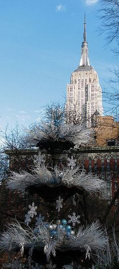 New York City | Nyc, New York City and York