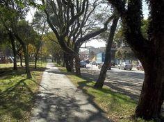 http://matka.com.br/blog/07/05/2012/lugares-para-correr-em-curitiba/