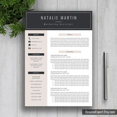 professional resume template cv template word us by resumeexpert - Simple Resume Template Word