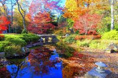 autumn in richmond va - Japanese Gardens Maymont Park Over The Years, Reflection, Golf Courses, Country Roads, Autumn, Park, Travel, Life, Japanese Gardens