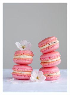 Google Image Result for http://1.bp.blogspot.com/_qCE0LNY2pjk/S58LtVE6x8I/AAAAAAAAAMw/LfEGLOS4DMQ/s1600/pink_macarons.jpg