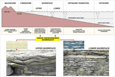 This a typical shoreface profile, with examples of fossilized wave ripple structures both in upper and lower shoreface sequences.