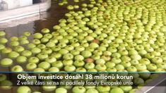 Chytré třídění jablek v Žernově Apple, Fruit, Food, Apple Fruit, Eten, Meals, Apples, Diet