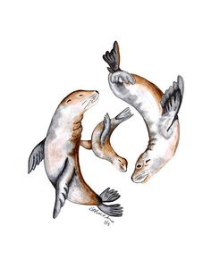 Sea Lion Art Under the Sea Nursery Ocean Nursery by TinyToesDesign