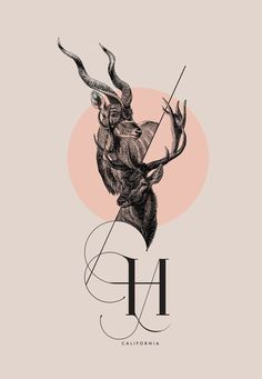 ISADORA Calligraphic Font by Daniel Barba, via Behance.: