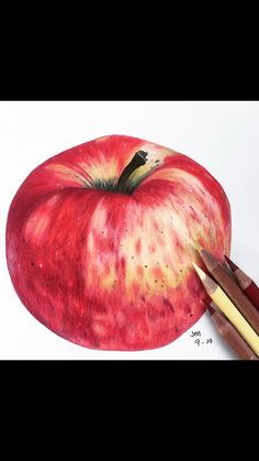 Learn how to draw this Apple along with many other botanical art projects including flowers, fruits, and plants using co Watercolor Pencil Art, Watercolor Paintings, Apple Drawing Pencil, Art Drawings Sketches Simple, Colorful Drawings, Colored Pencil Artwork, Drawings With Colored Pencils, Color Pencil Drawings, Blending Colored Pencils