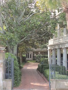 Charleston courtyards