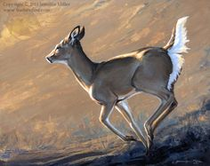 http://featherdust.storenvy.com/collections/7483-originals-wildlife-art/products/103583-goldie-whitetail-deer-acrylic-painting