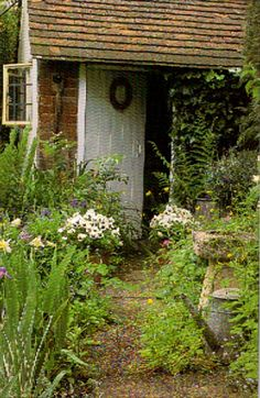 Garden path + cultivated wildflowers.